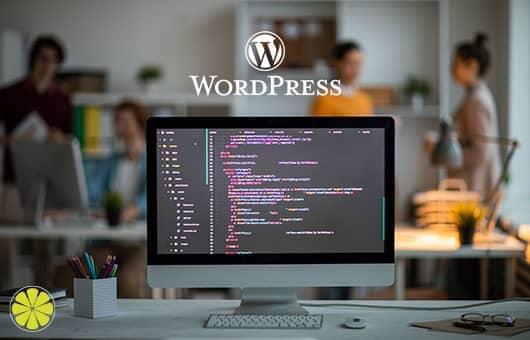 WordPress ist unserer Meinung nach das beste CMS!